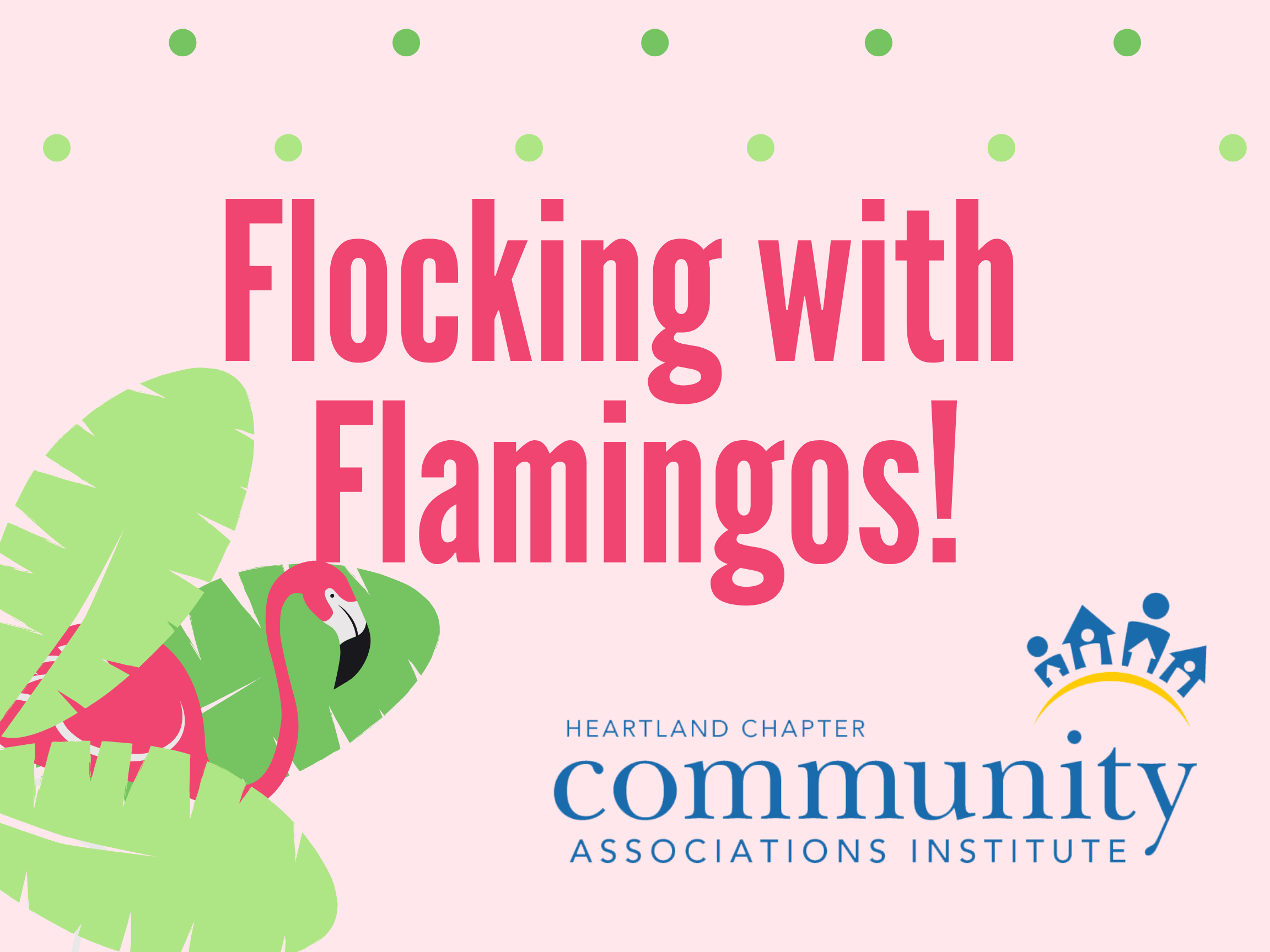 Flocking with Flamingos