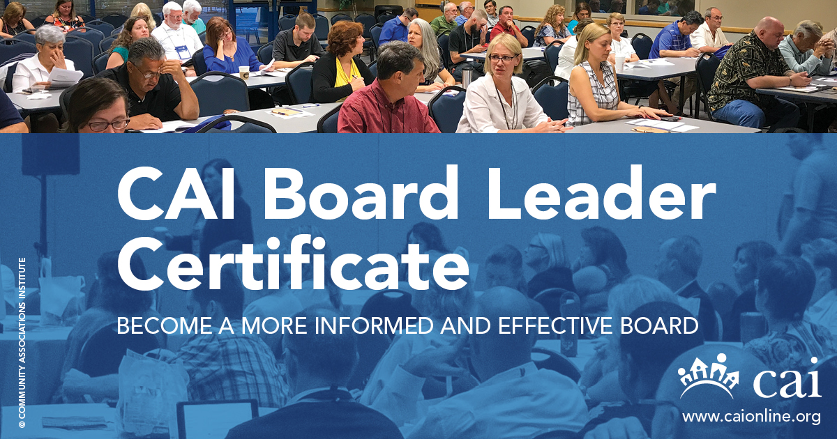VIRTUAL Board Leadership Certificate Program SERIES